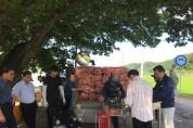 마늘수매.jpg