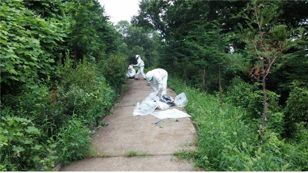 대구소방, 본격 벌초 시즌 벌 쏘임 및 안전사고 주의 요구