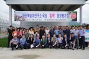 경북도 육성 신품종 복숭아'홍백'... 대박 예감!