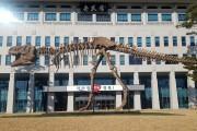 경북도청 앞마당에 공룡 조형물 설치